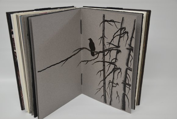 inspired-objects-5crow-book
